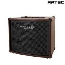 A100TS 100W Acoustic Guitar Amplifier 통기타 앰프